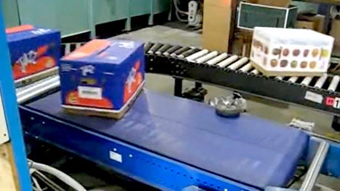 食品饮料包装流水线案例视频