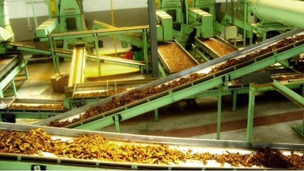 烟草工业输送带解决方案