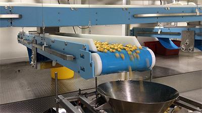 食品输送带的材质组成有哪些?