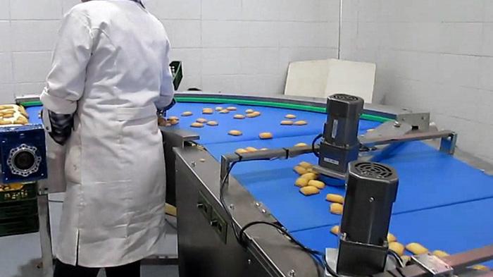 饼干输送带行业视频